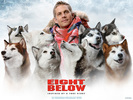 PAUL WALKER FROM EIGHT BELOW by pixiedust14