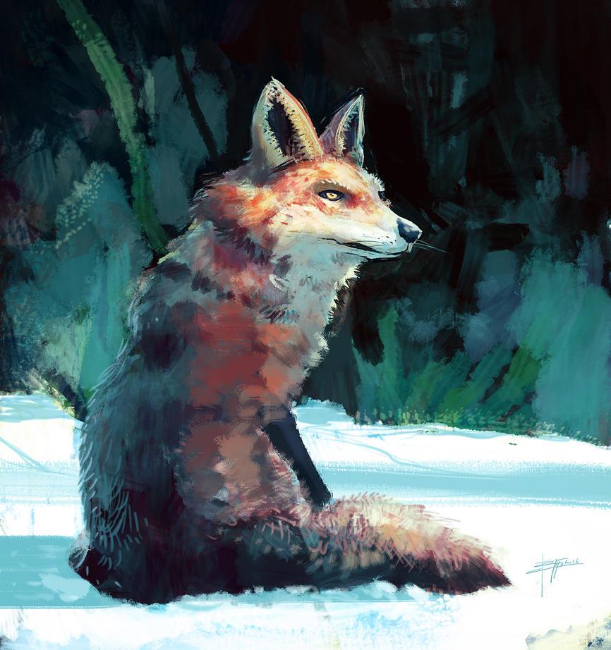 Fox by Alisandro89