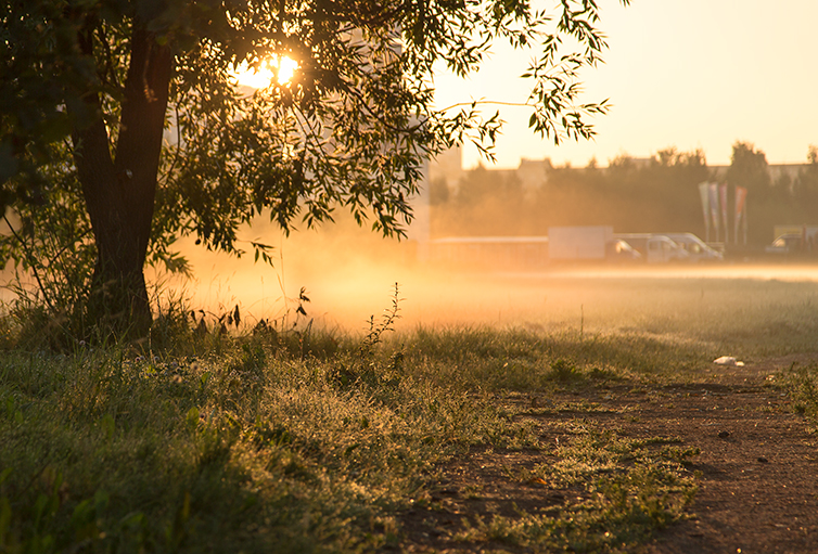 Morning Light >> Morning Light Test By Number14 On Deviantart
