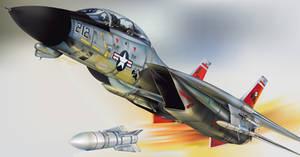Grumman F14 Tomcat by wakdor