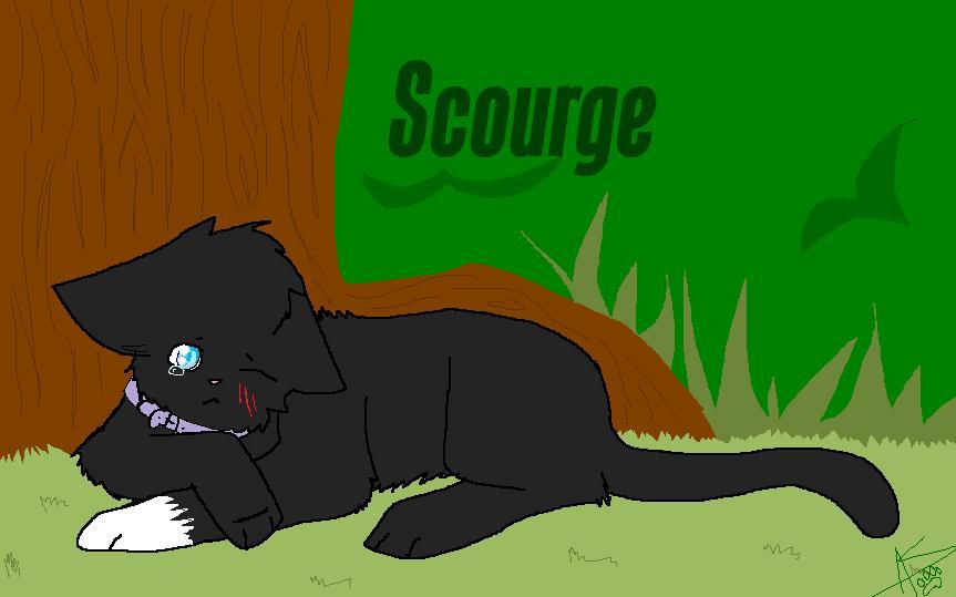 Scorge Warrior Cat Base