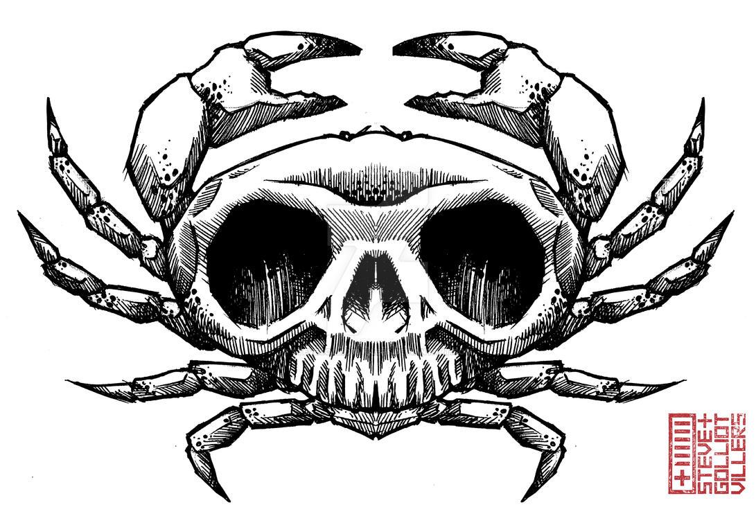 skull_crab_001_by_stevegolliotvillers-dcwfwv5.jpg