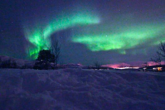 Northern Lights IV