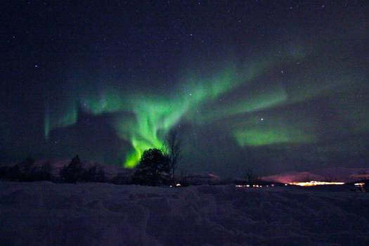 Northern Lights VIII