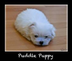 Blob of Cupcake - Puddle Puppy