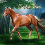 Sunshineprince