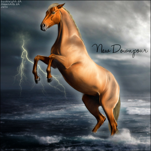Newdownpour