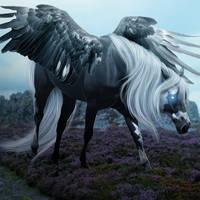 Pegasusfull by jelloswarmbloods