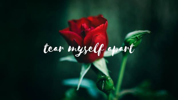 tear myself apart (song by tate mcrae)