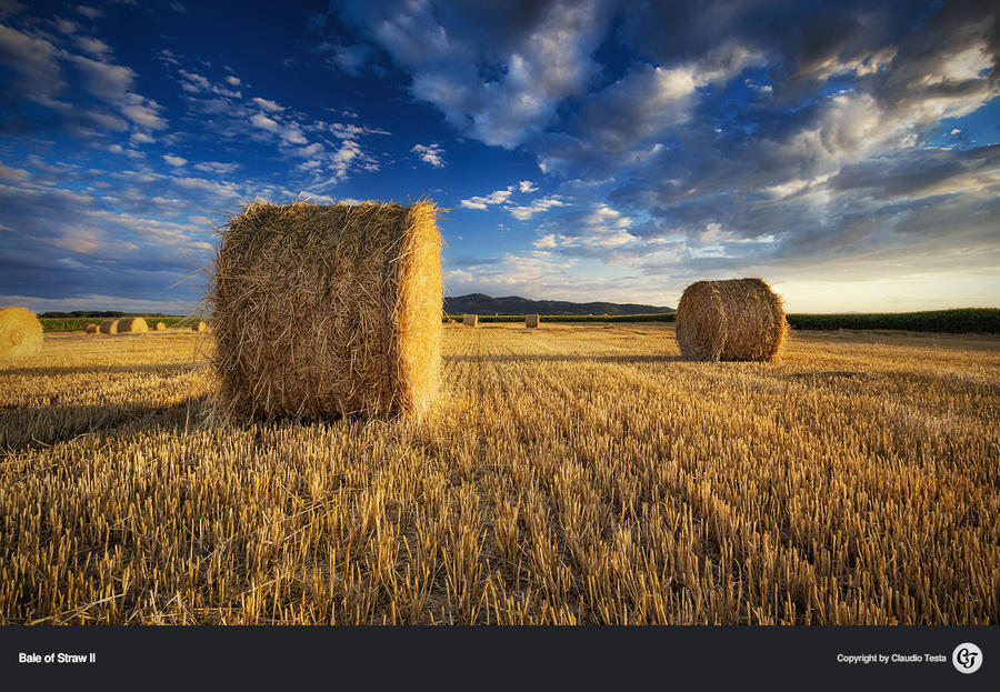 Bale of Straw II by NYClaudioTesta