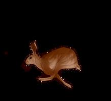 Hare Companion by EquusBallatorSociety