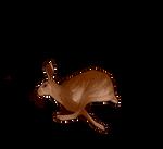 Hare Companion