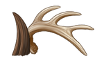 Antlers / Horns by EquusBallatorSociety