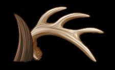 [Image: antlers___horns_by_equusballatorsociety-daukpwv.png]