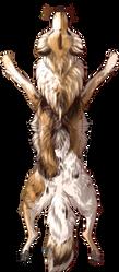 [Image: piebald_canine_pelt_by_equusballatorsoci...LSUaGAzD2c]