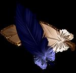 [Image: feathers_by_equusballatorsociety_daul4y2...0VKWAwhy9s]