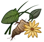 [Image: herbs_by_equusballatorsociety_dauoppn-15...cfjhJRiQJw]