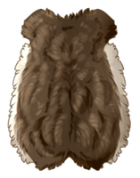 [Image: small_animal_pelt_by_equusballatorsociet...TqiG1xQx-g]