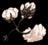 [Image: cotton_by_equusballatorsociety-dawuo2b.png]