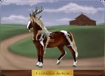 GH 1132 | Culpatus Aurum by EquusBallatorSociety