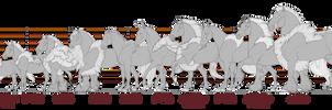 Equus Ballator Type Size Comparison