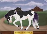 GH 055 | Pulchra Deceptus by EquusBallatorSociety