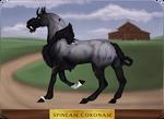 GH 054 | Spineam Coronam by EquusBallatorSociety
