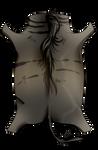[Image: wildebeest_hide_by_equusballatorsociety_...iYvNUA6ypM]