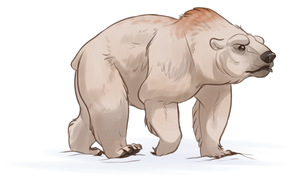 Bear Companion by EquusBallatorSociety
