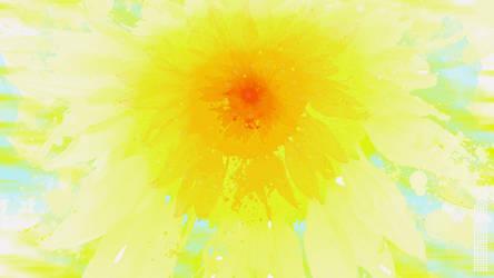 Sunflower-2019-1