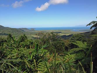 Daintree Rainforest by EZReader111