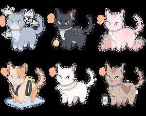 Cat Adoptables! (Open)