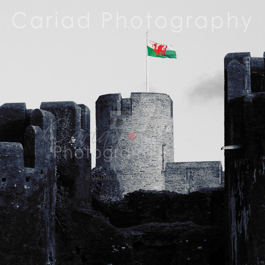 Welsh Collection - Caerphilly Castle by jadalia