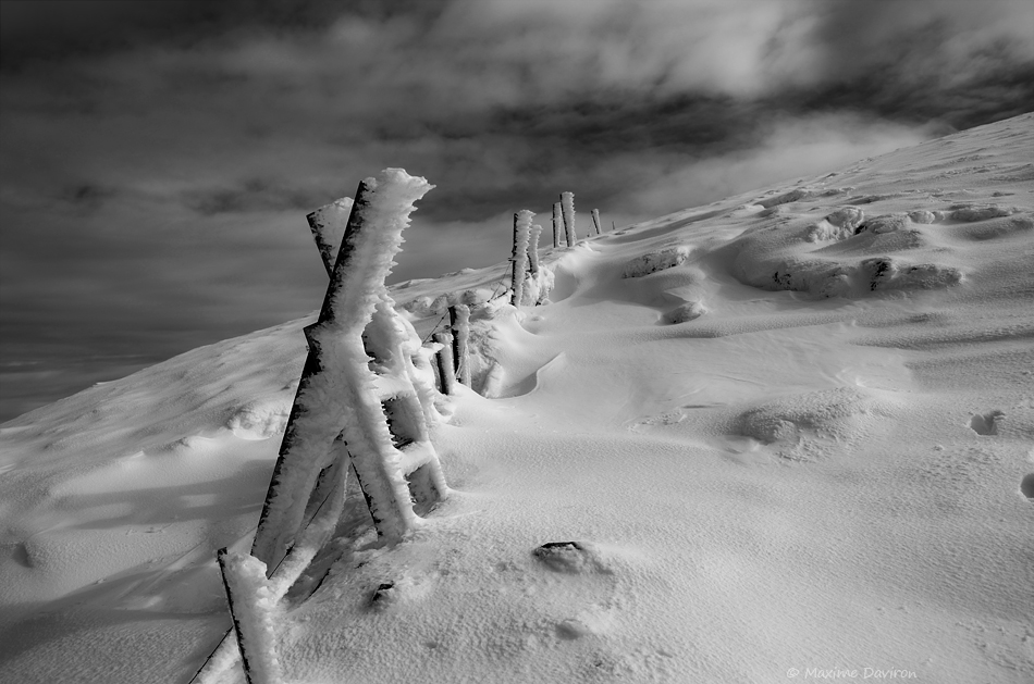 Frozen by MaximeDaviron