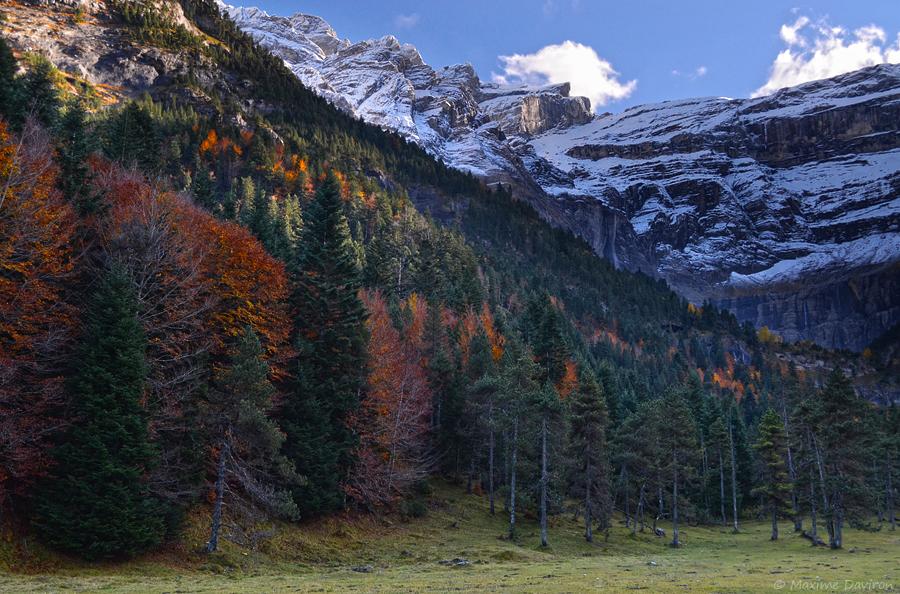 Autumn by MaximeDaviron