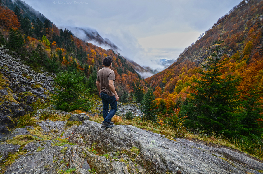 Autumn II by MaximeDaviron