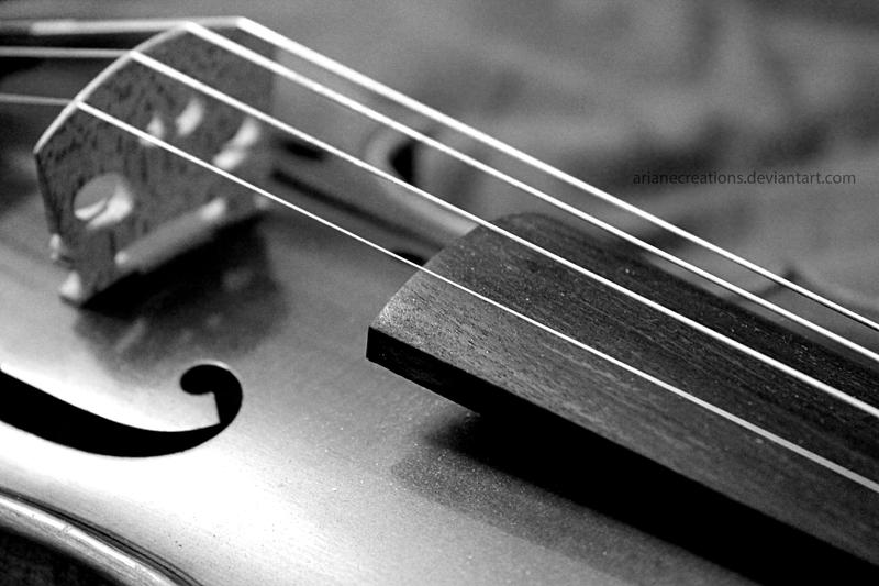 Violin 2 by ArianeCreations