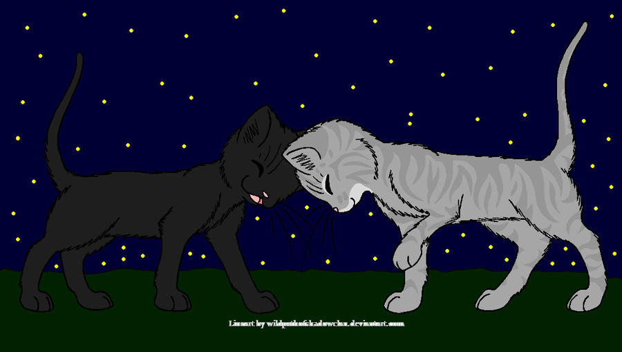 Warrior Cats Crowfeather And Leafpool Mating