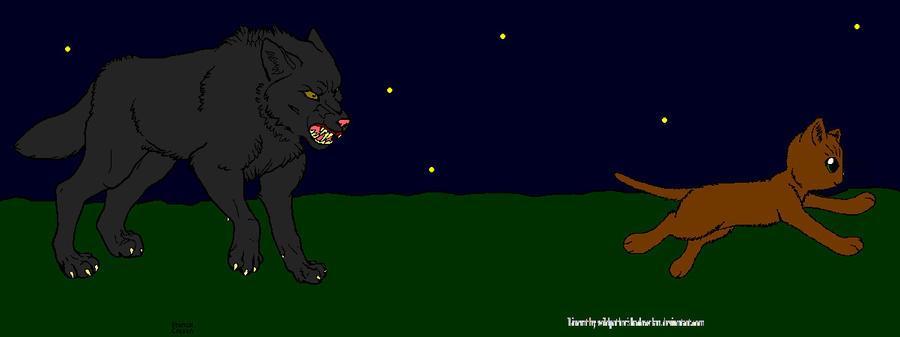 Dog Chasing a Cat by DemonicVampyreWolf