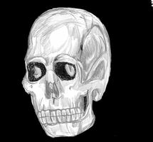 Skull by LeevanCleefIII