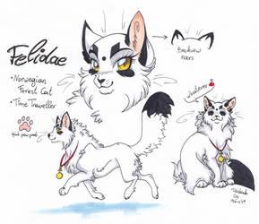 .:Felidae:. by Rabbiata