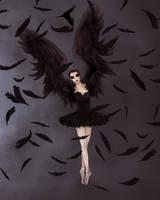 Black Swan by Purple-Meow