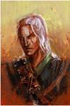 Geralt - Witcher