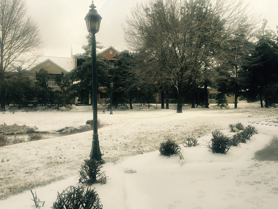 More Snow by Ghostwalker2061