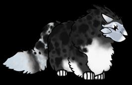 Fluff muffin pose by cursedwolf102