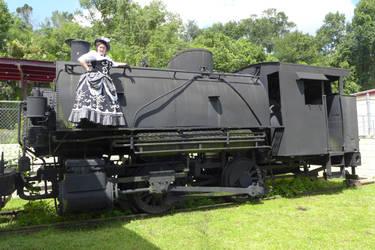 GISHWHES 2013 #71 Steampunk on a Train Part 2 by Timestitcher