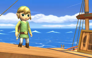 Toon Link 1 by spikex