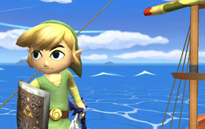 Toon Link 5 by spikex