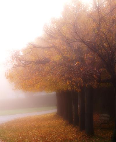 autumn by klaic