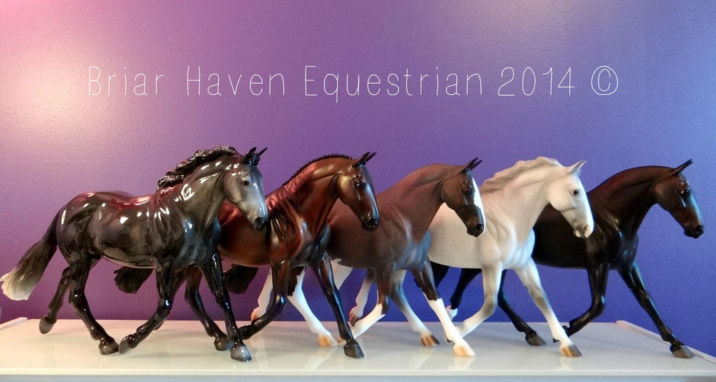 Cleveland Bay Conga of 5 by Breyer101